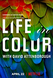 Life in Colour - Season 1| Watch Movies Online