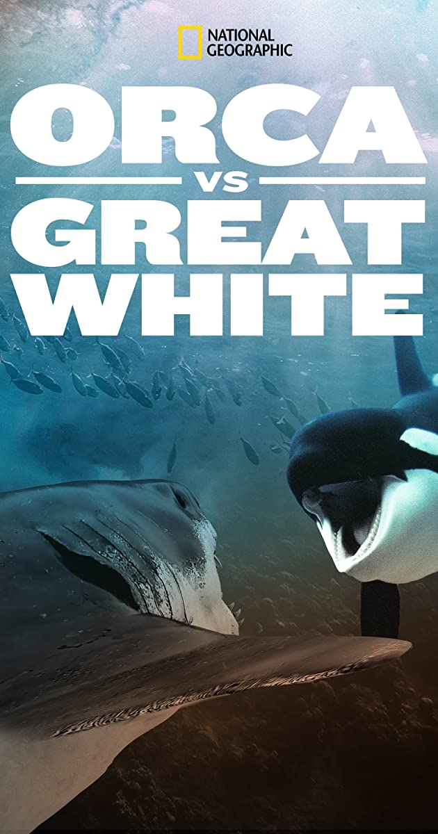 Orca vs. Great White| Watch Movies Online