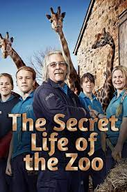 The Secret Life of the Zoo - Season 11| Watch Movies Online