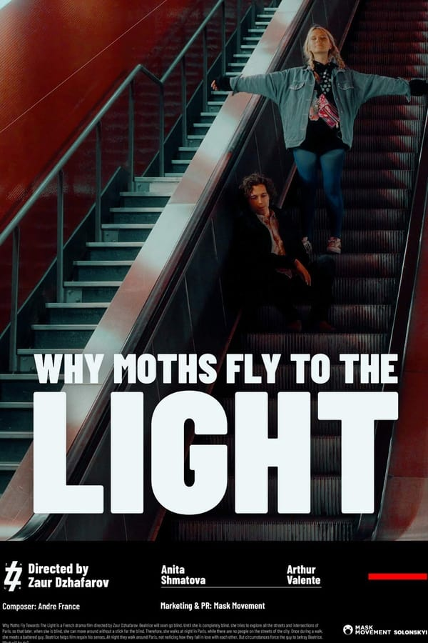 Why Moths Fly to the Light?| Watch Movies Online